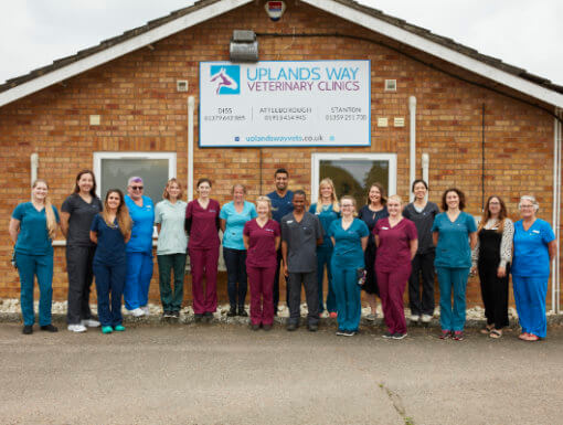 Uplands Way Veterinary Clinic in Diss